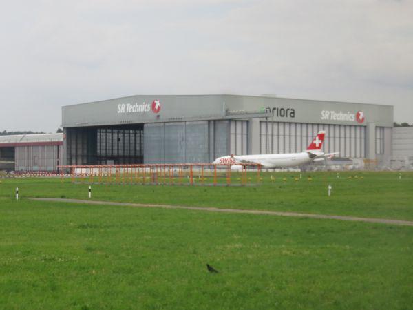 IMG3565